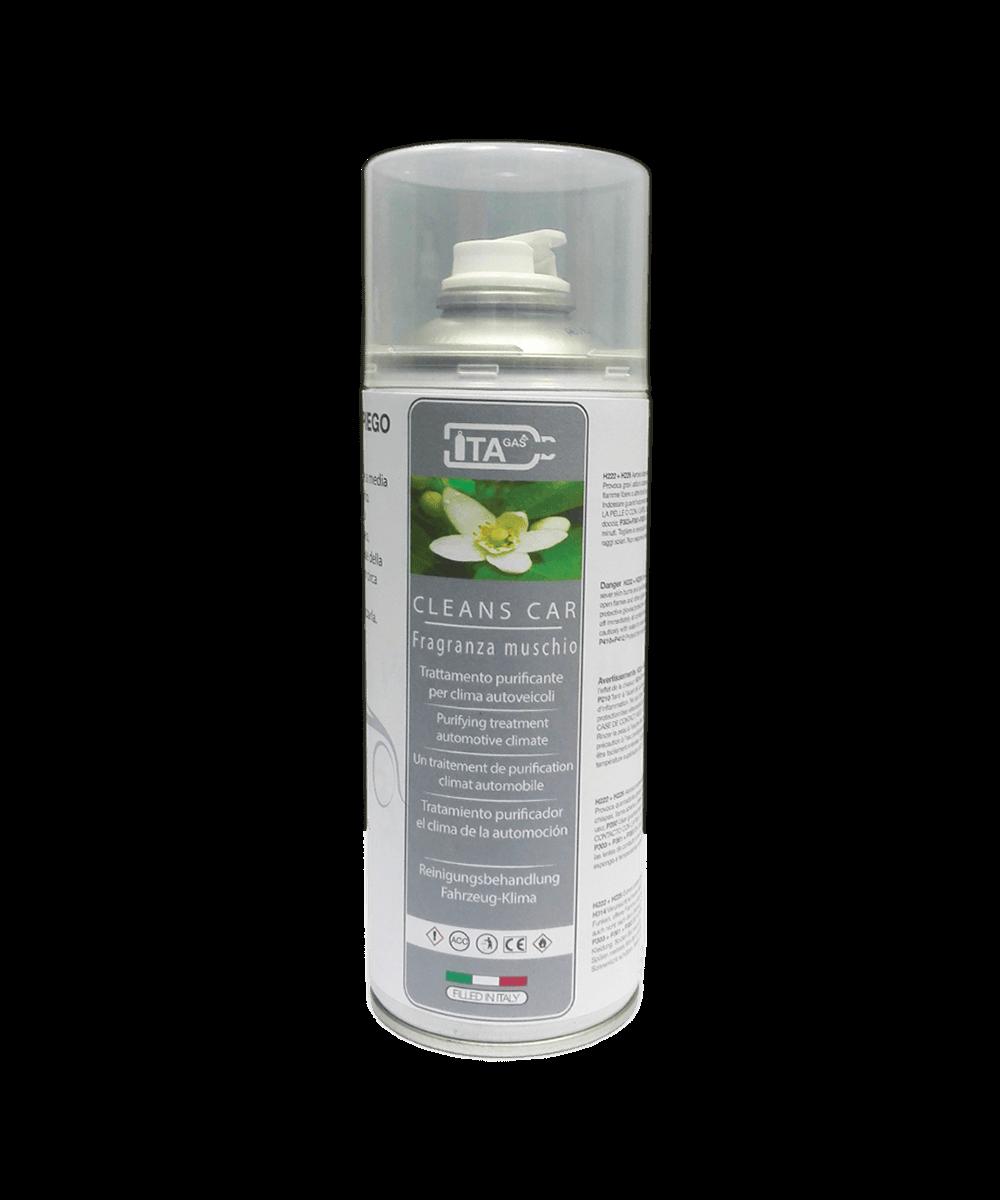 Cleans Car SN8001
